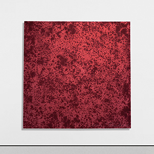 50 RED FEBRUARY 28 APRIL 4 2019 at Laleh June Galerie