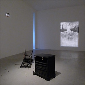 CHRISTINE BOILLAT, ACCIDENTS AND CEREMONIES,  MAR 1 – MAY 25 2013